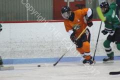 02-05fc_hockey2