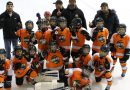 Weekend results from minor hockey Comets, Lions