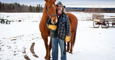 Canadian horses: Michel Allen raises masters of versatility
